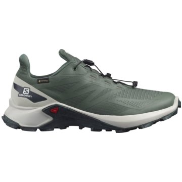 Salomon TrailrunningSUPERCROSS BLAST GTX - L41284100 grün