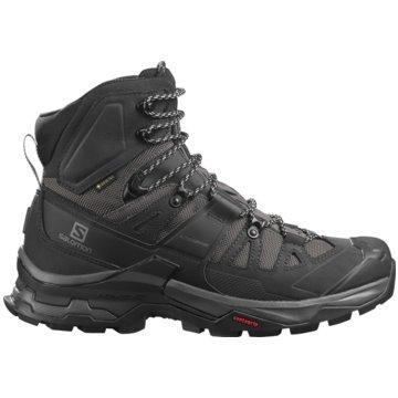 Salomon Outdoor SchuhQUEST 4 GTX - L41292600 grau