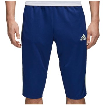 adidas Kurze HosenTango Training 3/4 Pant blau