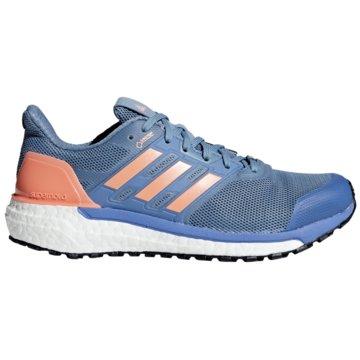 adidas RunningSupernova Boost GTX Women blau