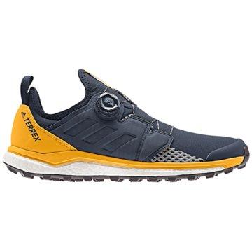 adidas TrailrunningTerrex Agravic Boa Boost blau