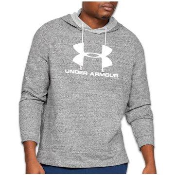 Under Armour SweatshirtsSportstyle Logo Terry Hoodie grau