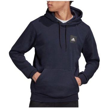 adidas HoodiesMust Haves PO GFX Hoodie blau