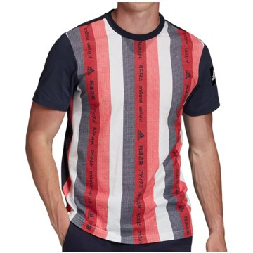 adidas T-ShirtsMust Haves Graphics Tee blau