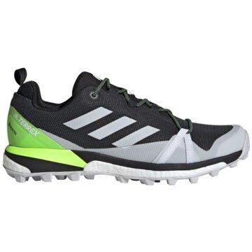 adidas Outdoor SchuhTerrex Skychaser LT GTX schwarz