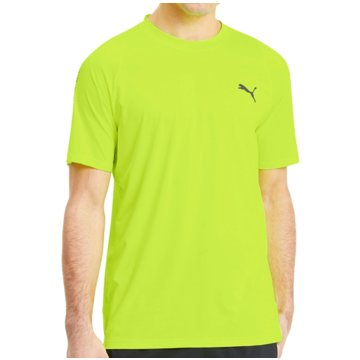 Puma T-ShirtsPower Thermo R+ Training Tee gelb