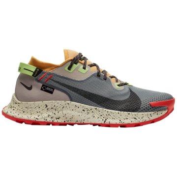 Nike RunningPEGASUS TRAIL 2 GORE-TEX - CU2016-002 grau