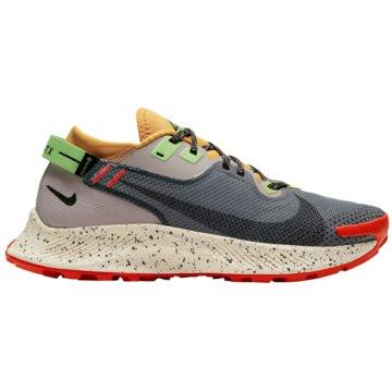 Nike RunningPEGASUS TRAIL 2 GORE-TEX - CU2018-002 bunt