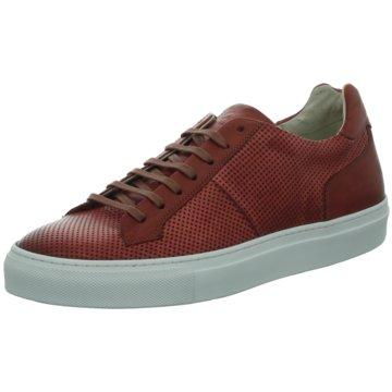 Corvari Sneaker rot