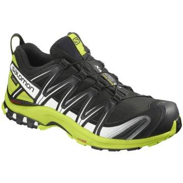Salomon TrailrunningXA PRO 3D GTX - L40671400 grau