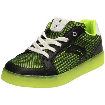 Geox Schnürschuh grün