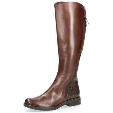 2d8c55471bc6b2 Caprice Stiefel für Damen günstig online kaufen