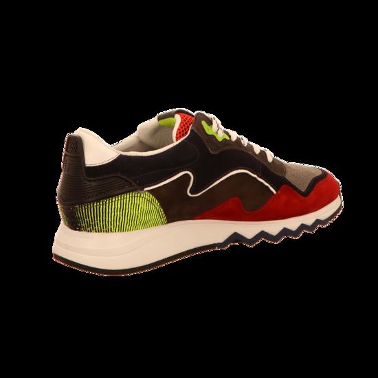release info on super popular hot sales Floris van Bommel Floris Sport Red Suede Sneaker