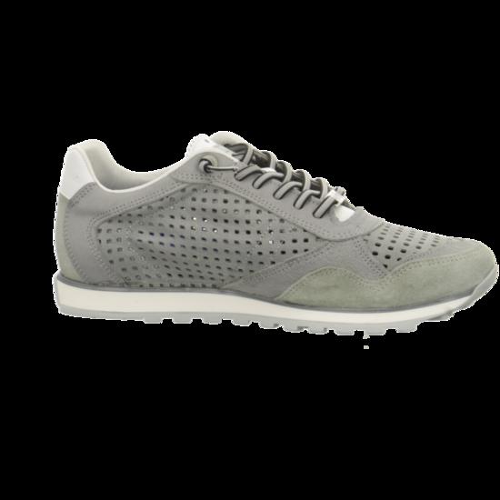 C848STO lohnt Sneaker Niedrig von Cetti--Gutes Preis-Leistungs-, es lohnt C848STO sich 9a0863