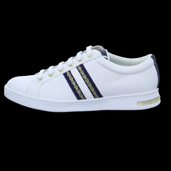 Geox Sneaker Low