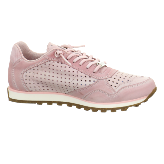 Jogger Sneaker C848 rosa Sneaker Jogger Niedrig von Cetti--Gutes Preis-Leistungs-, es lohnt sich 346934